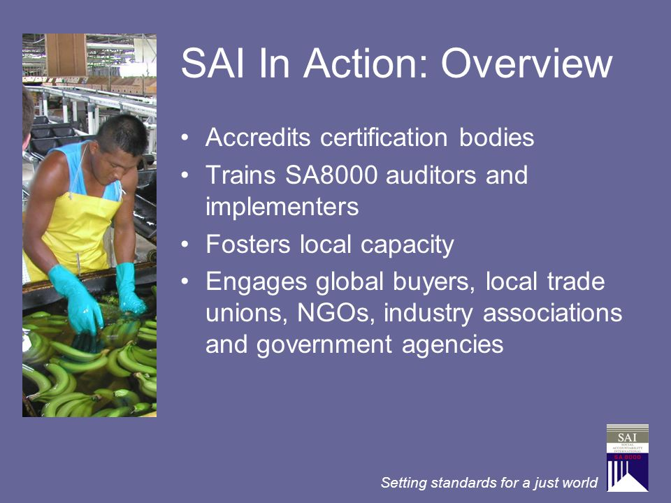 SAI In Action: Overview