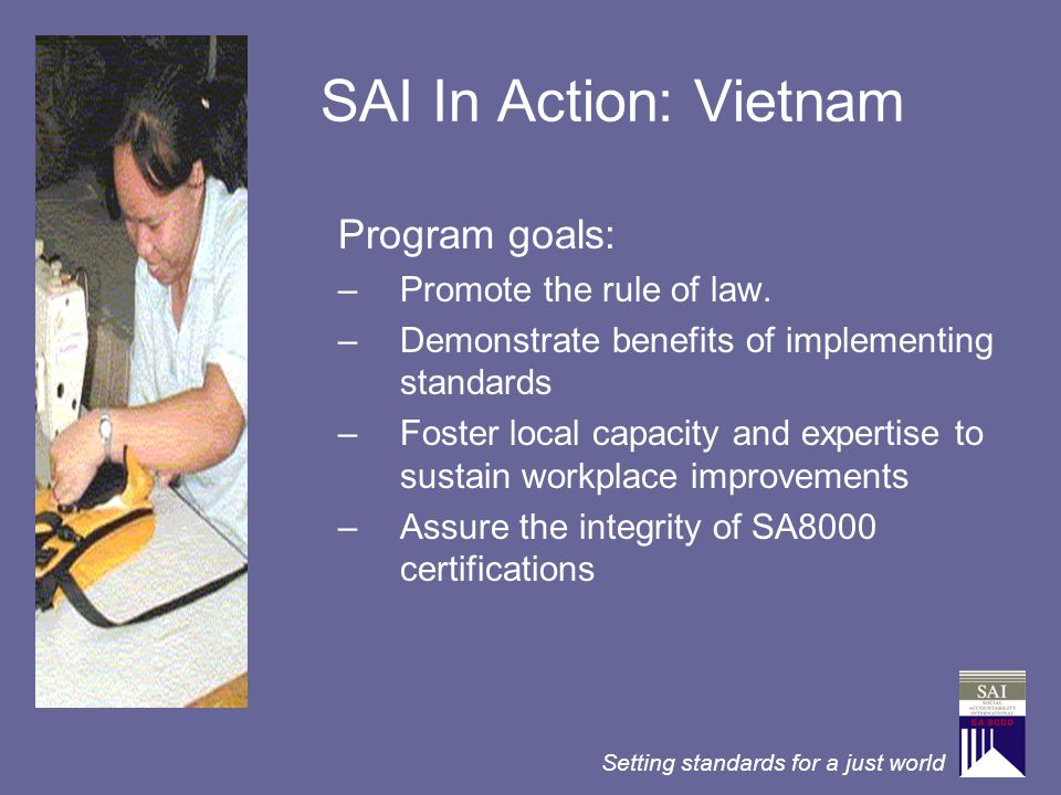 SAI In Action: Vietnam Program goals: Promote the rule of law.