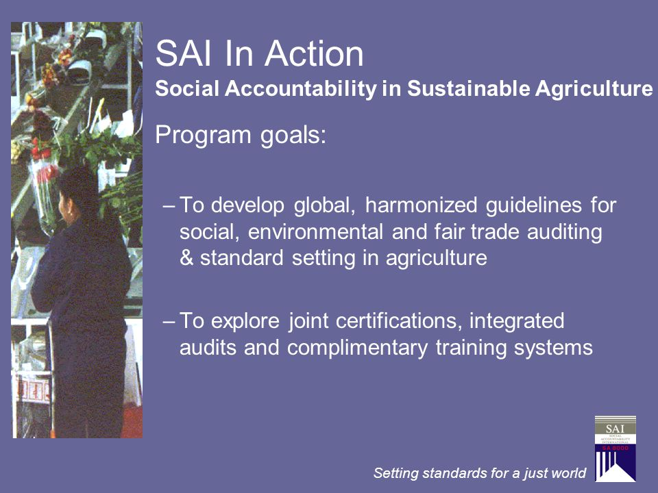 SAI In Action Program goals: