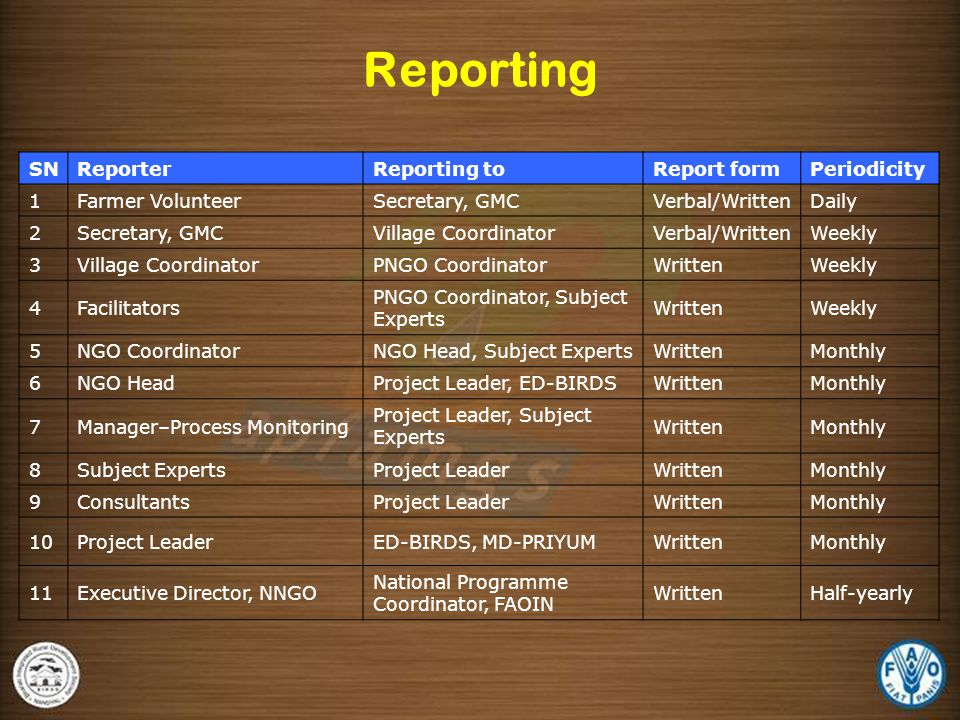 Reporting SN Reporter Reporting to Report form Periodicity 1