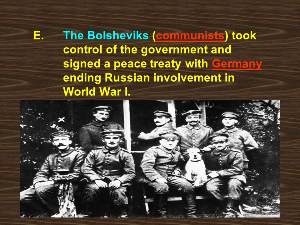 E. The Bolsheviks (communists) took. control of the government and