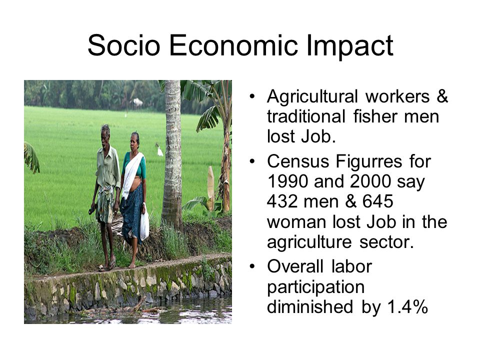 Socio Economic Impact Agricultural workers & traditional fisher men lost Job.
