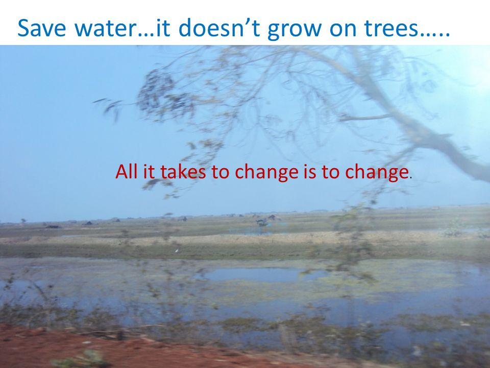 Save water…it doesn't grow on trees…..