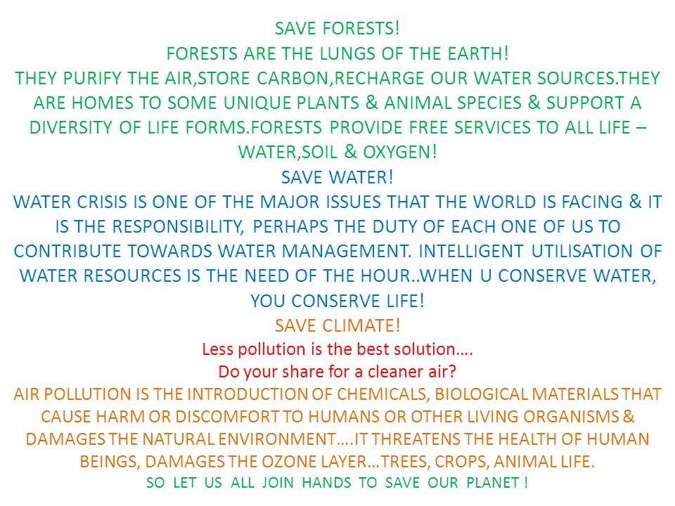 SAVE FORESTS. FORESTS ARE THE LUNGS OF THE EARTH