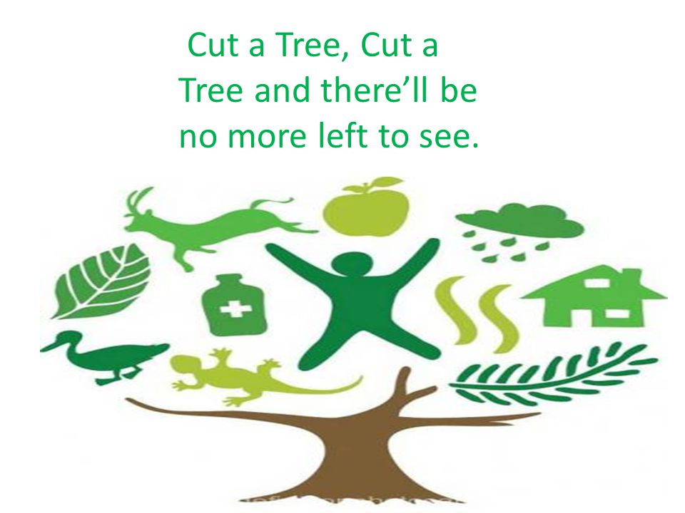 Cut a Tree, Cut a Tree and there'll be no more left to see.