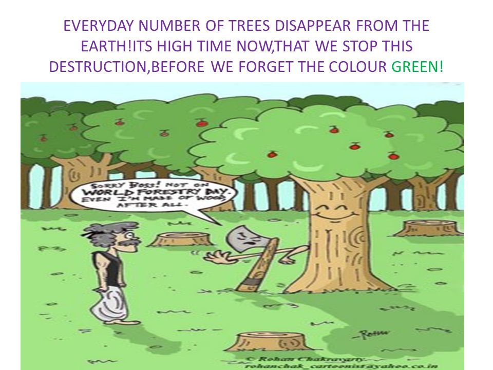 EVERYDAY NUMBER OF TREES DISAPPEAR FROM THE EARTH