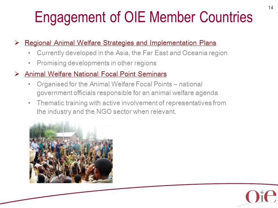 Engagement of OIE Member Countries