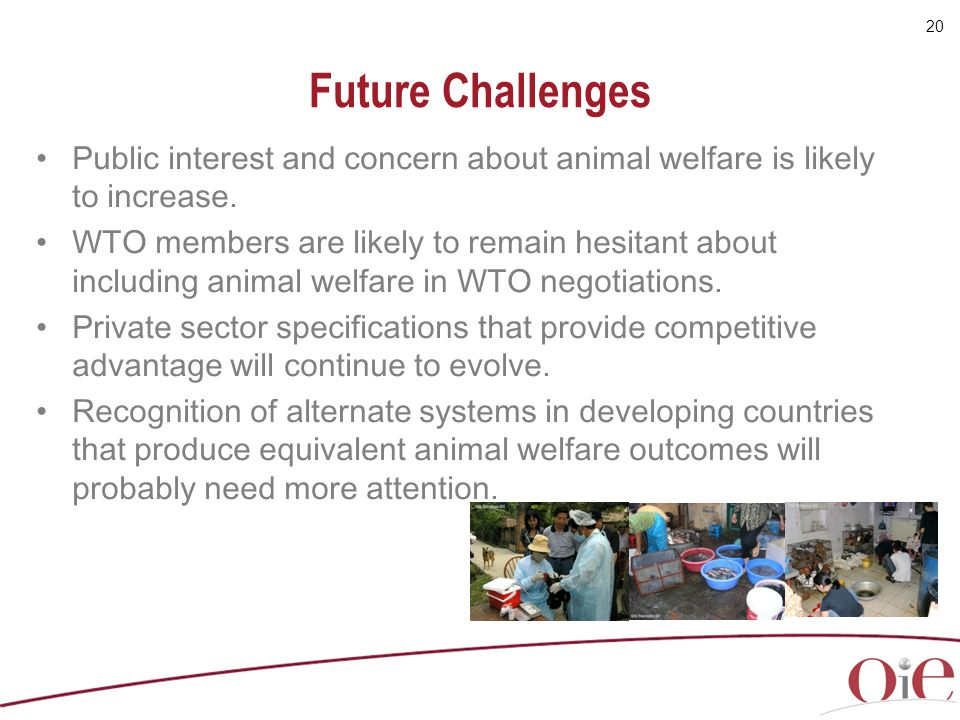 Future Challenges Public interest and concern about animal welfare is likely to increase.