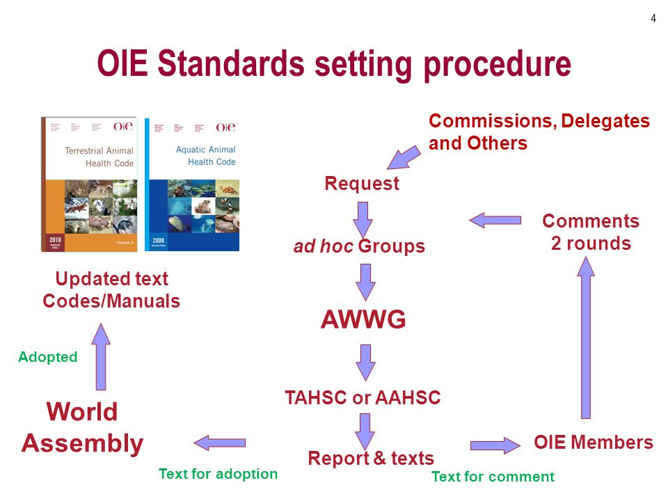OIE Standards setting procedure