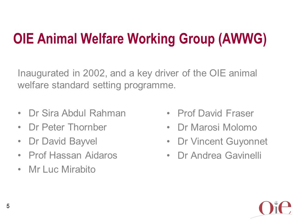 OIE Animal Welfare Working Group (AWWG)