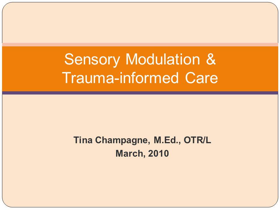 Sensory Modulation & Trauma-informed Care