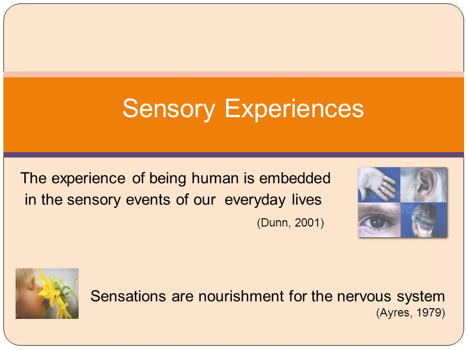Sensory Experiences (Dunn, 2001)