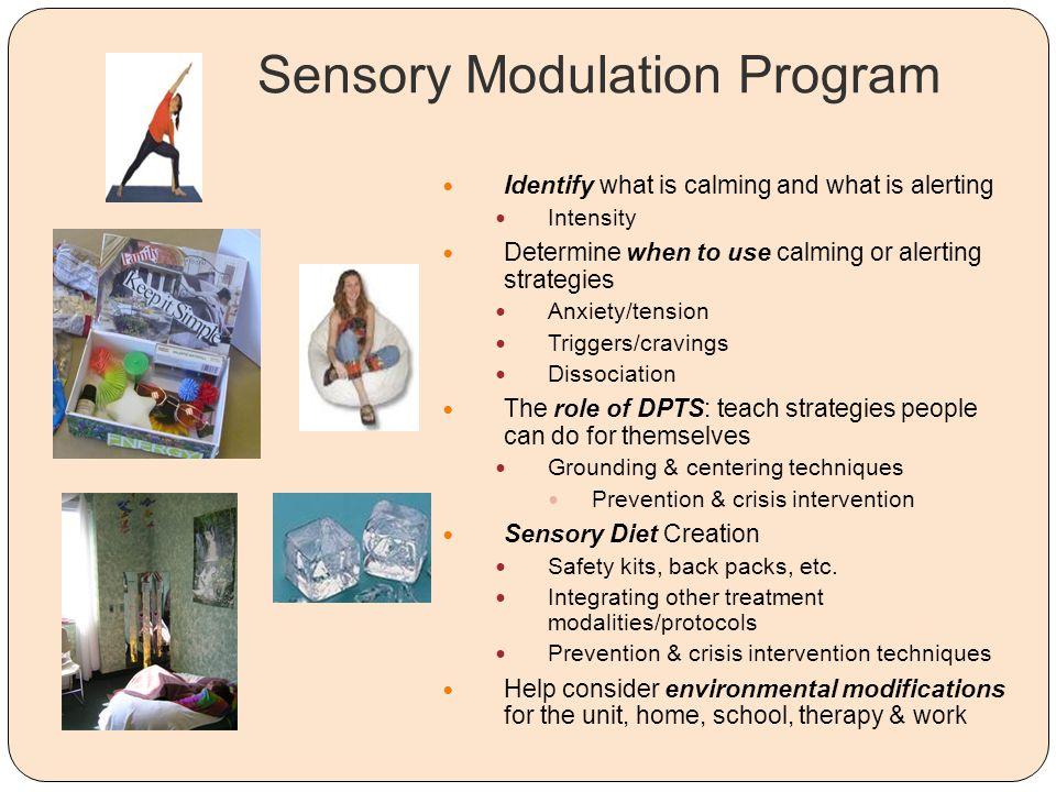 Sensory Modulation Program