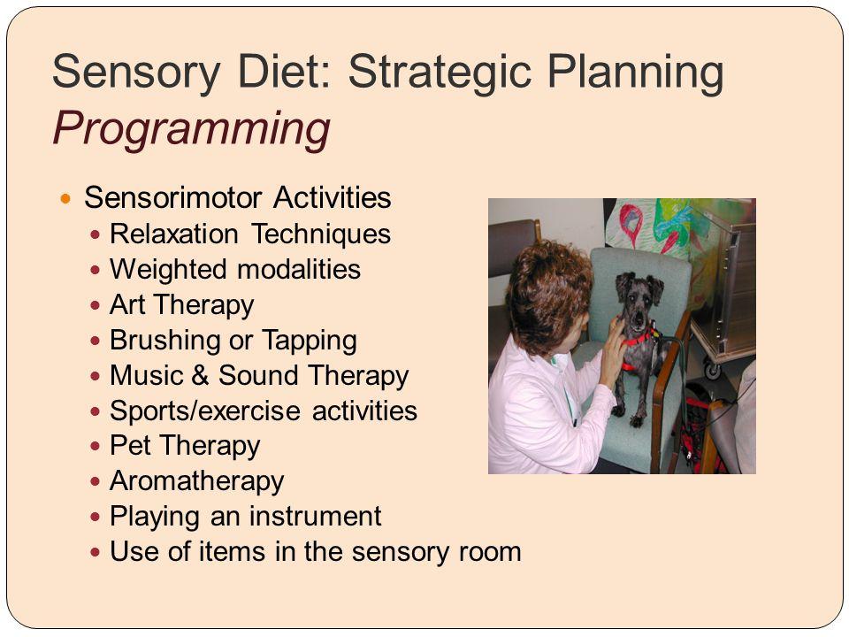 Sensory Diet: Strategic Planning Programming