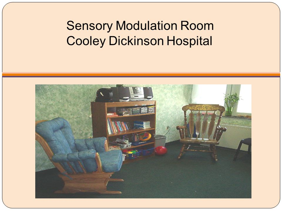 Sensory Modulation Room