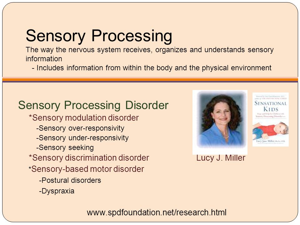 Sensory Processing The way the nervous system receives, organizes and understands sensory information - Includes information from within the body and the physical environment