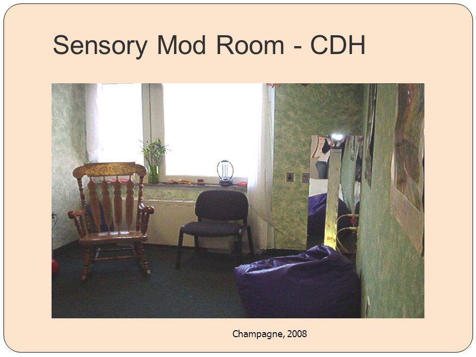 Sensory Mod Room - CDH Champagne, 2008 40