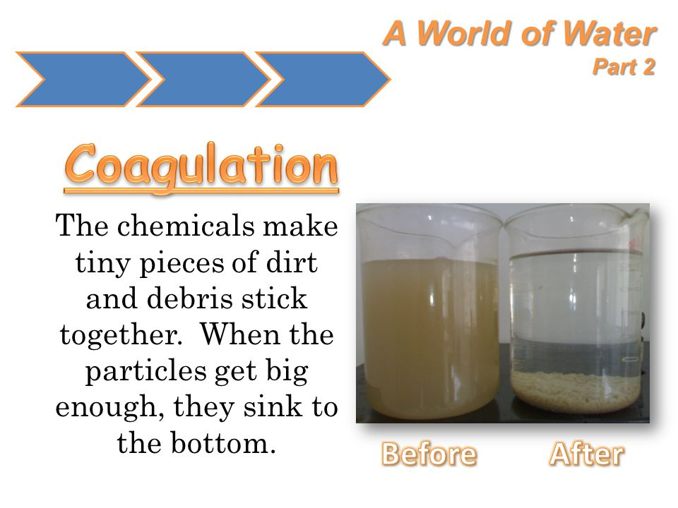 Coagulation A World of Water Part 2 Before After