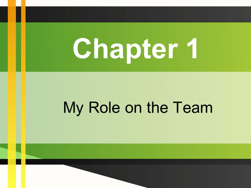 Chapter 1 My Role on the Team