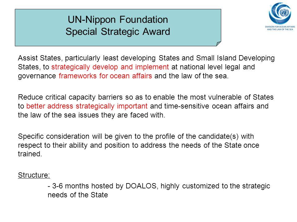 UN-Nippon Foundation Special Strategic Award