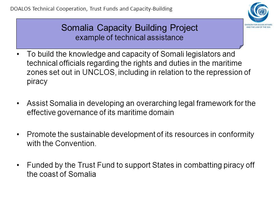 Somalia Capacity Building Project example of technical assistance