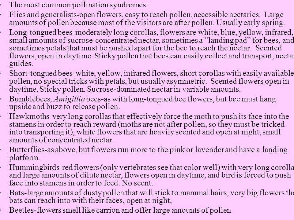 The most common pollination syndromes: