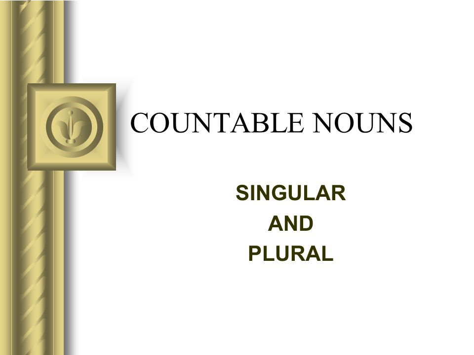 COUNTABLE NOUNS SINGULAR AND PLURAL