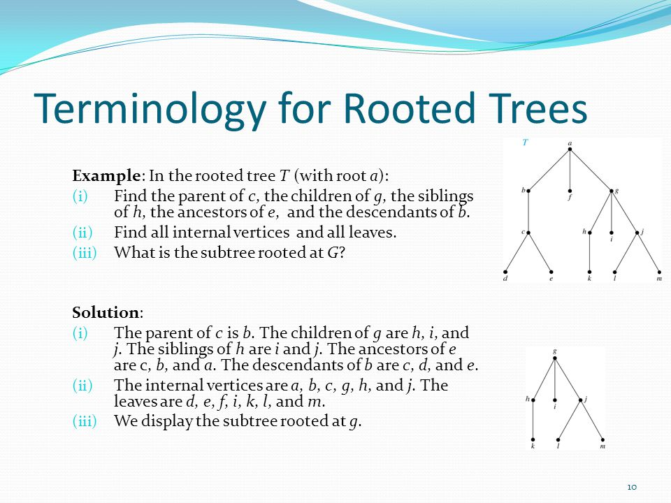 Terminology for Rooted Trees