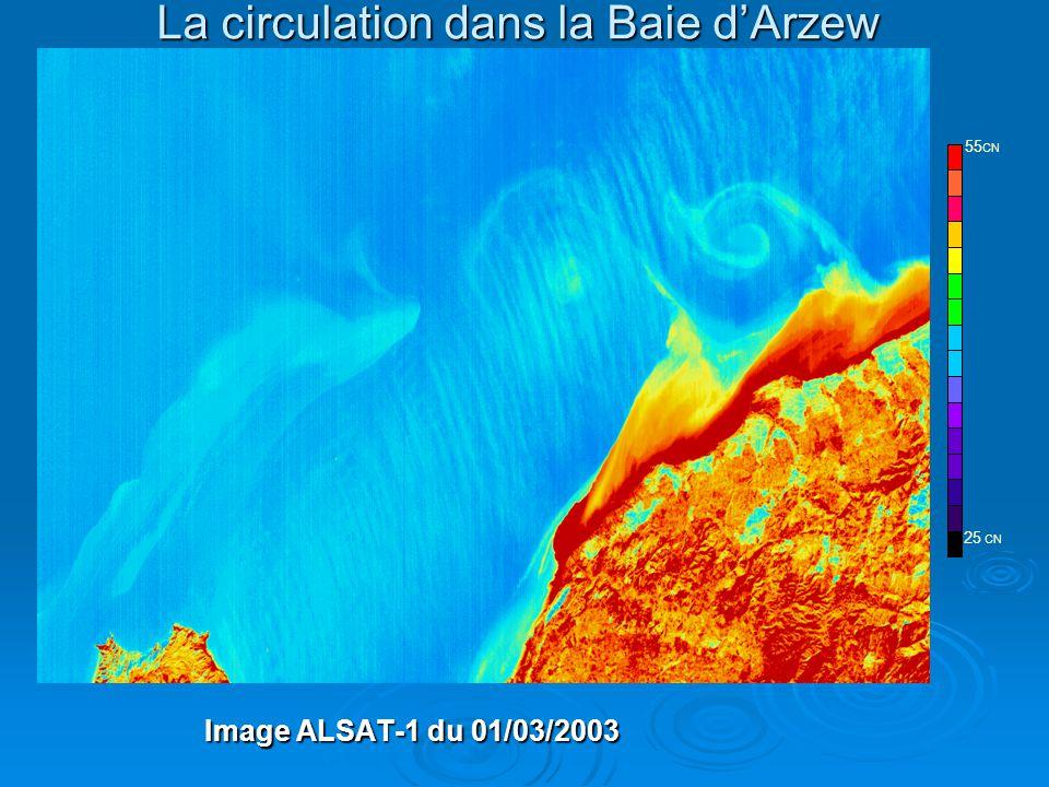 La circulation dans la Baie d'Arzew