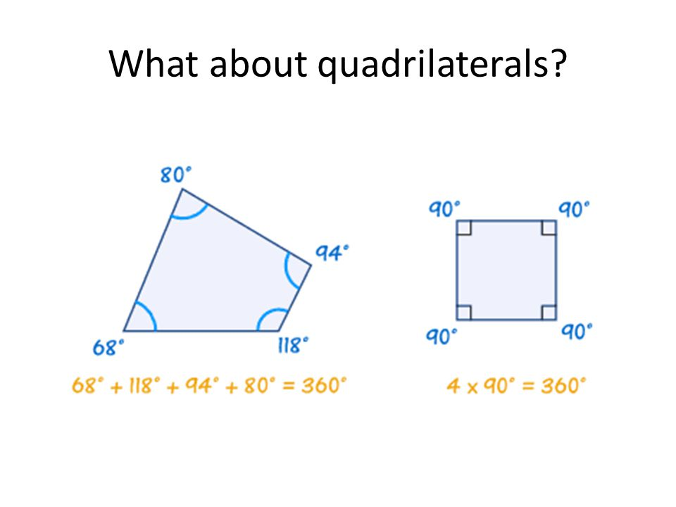 What about quadrilaterals
