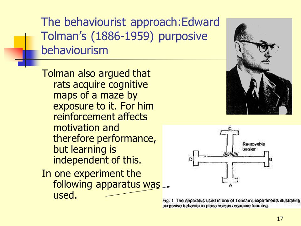 The behaviourist approach:Edward Tolman's (1886-1959) purposive behaviourism