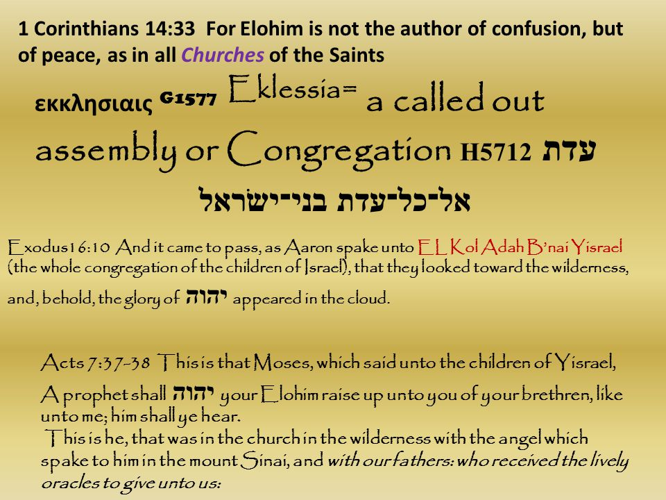 1 Corinthians 14:33 For Elohim is not the author of confusion, but of peace, as in all Churches of the Saints