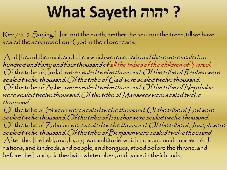Rev 7:3-9 Saying, Hurt not the earth, neither the sea, nor the trees, till we have sealed the servants of our God in their foreheads.