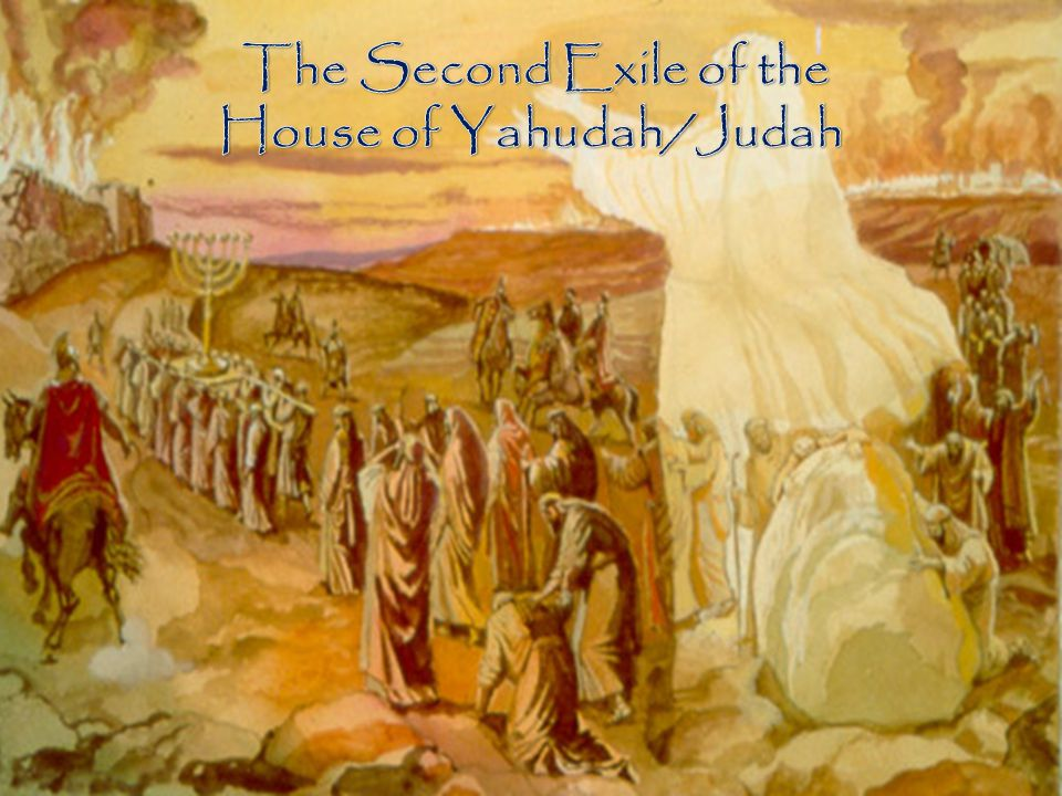 House of Yahudah/Judah
