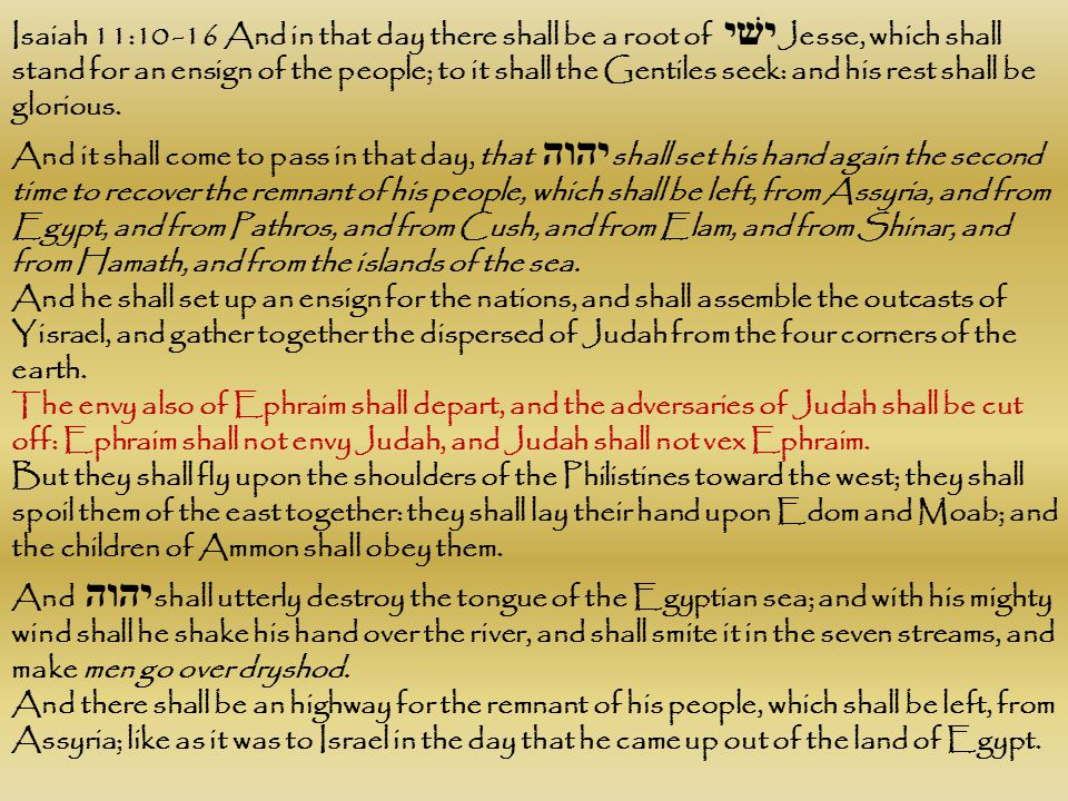Isaiah 11:10 -16 And in that day there shall be a root of ישׁי Jesse, which shall stand for an ensign of the people; to it shall the Gentiles seek: and his rest shall be glorious.
