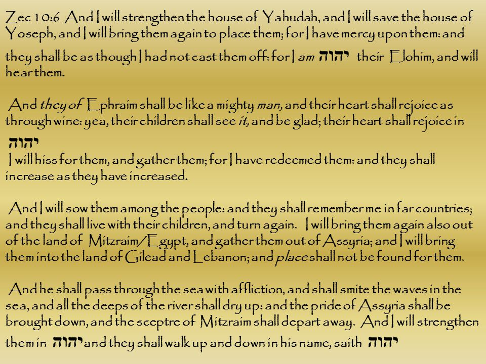 Zec 10:6 And I will strengthen the house of Yahudah, and I will save the house of Yoseph, and I will bring them again to place them; for I have mercy upon them: and they shall be as though I had not cast them off: for I am יהוה their Elohim, and will hear them.