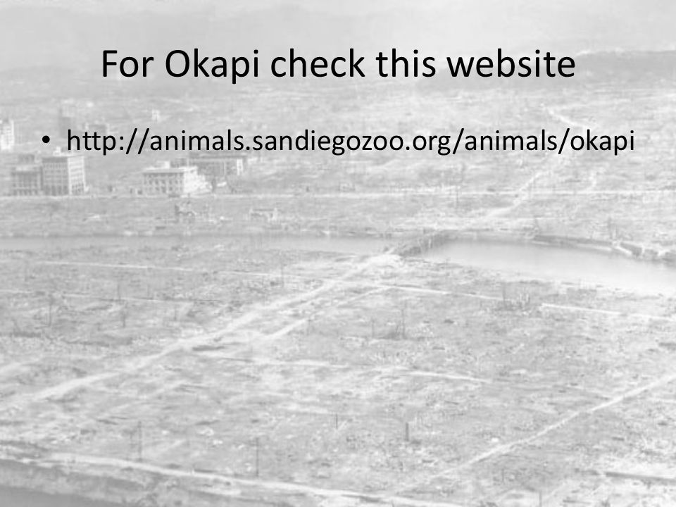 For Okapi check this website