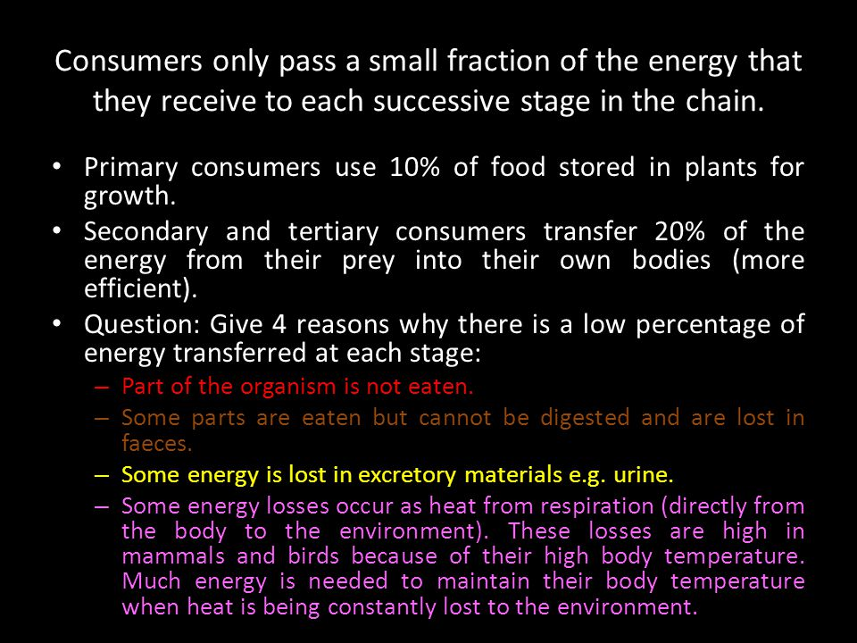 Consumers only pass a small fraction of the energy that they receive to each successive stage in the chain.