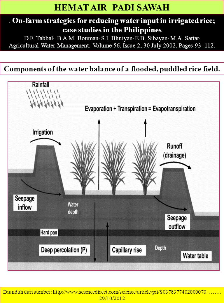 Components of the water balance of a flooded, puddled rice field.