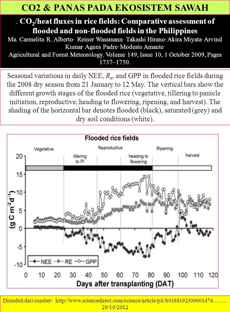 CO2 & PANAS PADA EKOSISTEM SAWAH