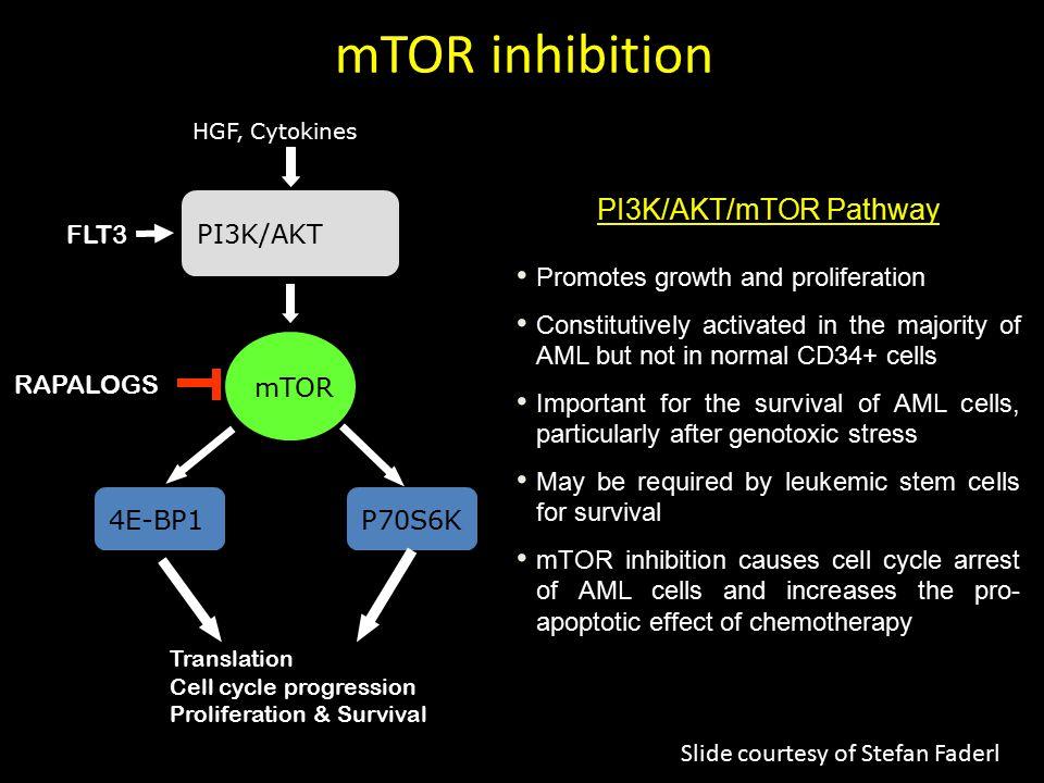 mTOR inhibition PI3K/AKT/mTOR Pathway PI3K/AKT