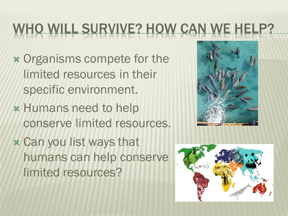 Who will survive How can we help