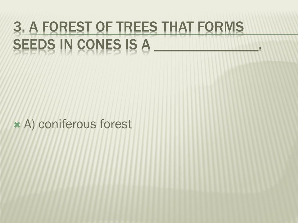 3. A forest of trees that forms seeds in cones is a ______________.