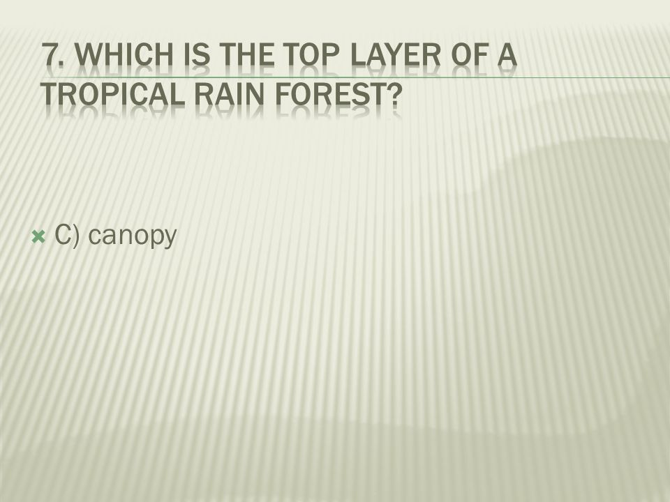 7. Which is the top layer of a tropical rain forest