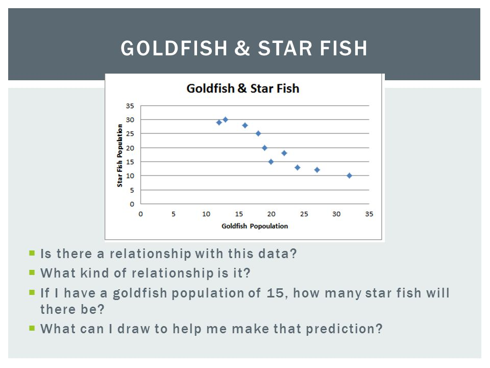 Goldfish & Star Fish Is there a relationship with this data
