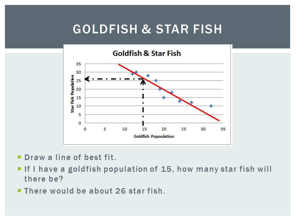 Goldfish & Star Fish Draw a line of best fit.