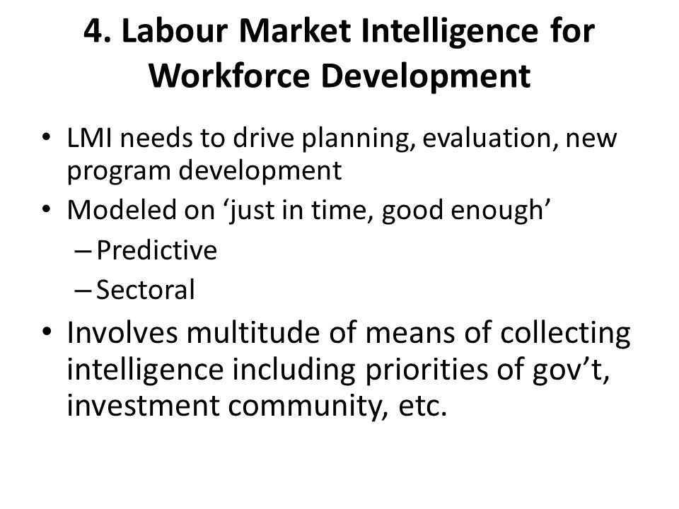 4. Labour Market Intelligence for Workforce Development