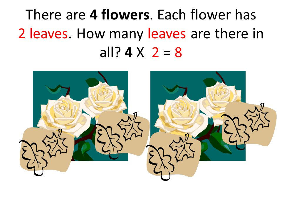 There are 4 flowers. Each flower has 2 leaves