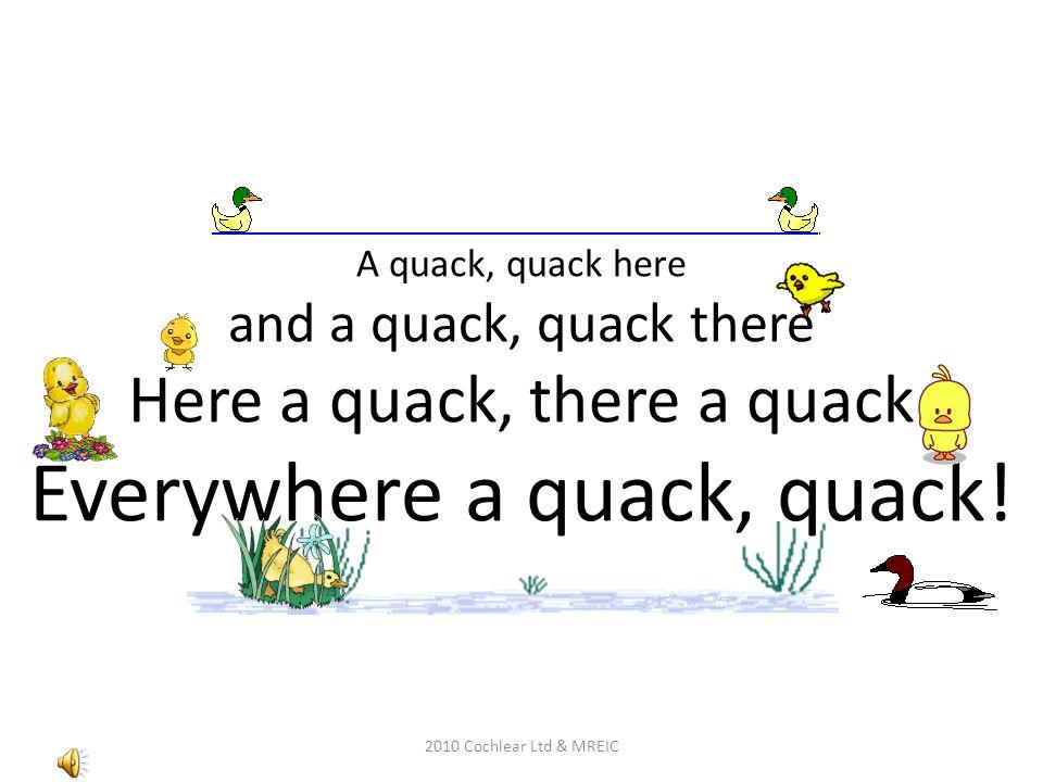 A quack, quack here and a quack, quack there Here a quack, there a quack Everywhere a quack, quack!