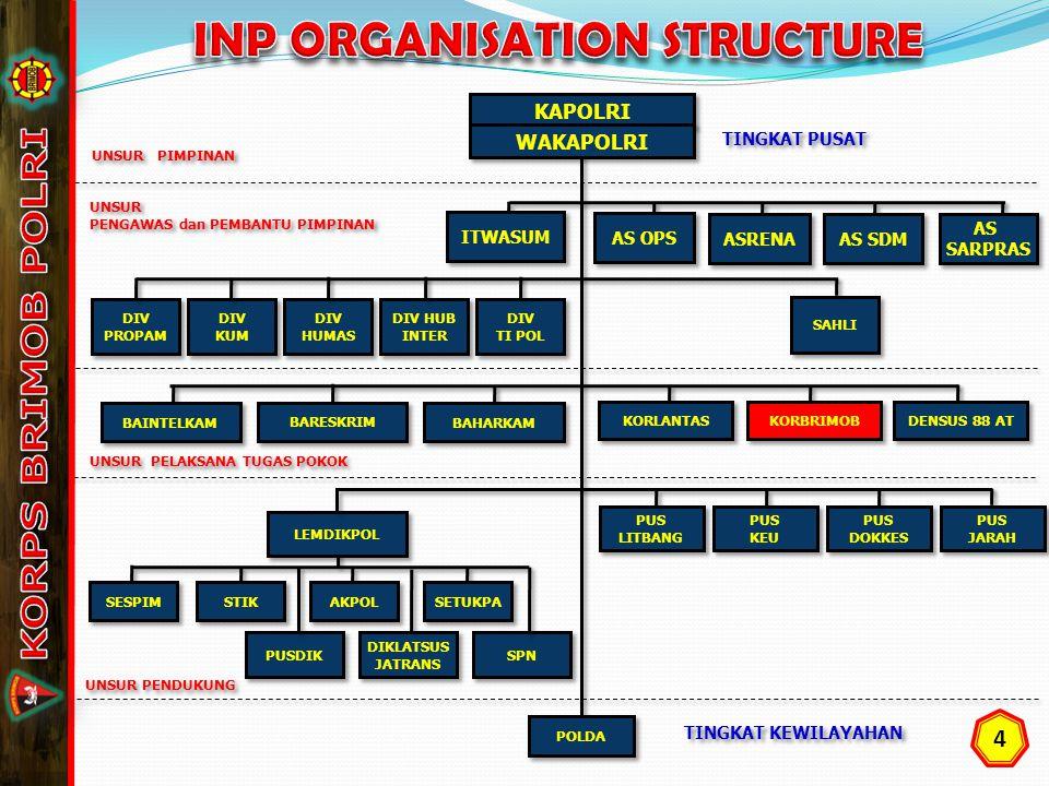 INP ORGANISATION STRUCTURE